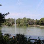 """[Corte cost. n. 14/2012] L'ampliamento della riserva naturale """"pineta dannunziana"""" con legge regionale è incostituzionale"""